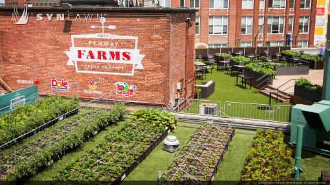 SYNLawn-artificial-grass-commercial-fenway-farms-fresh-produce