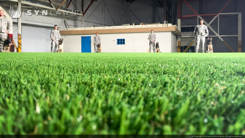 military dogs training on artificial turf